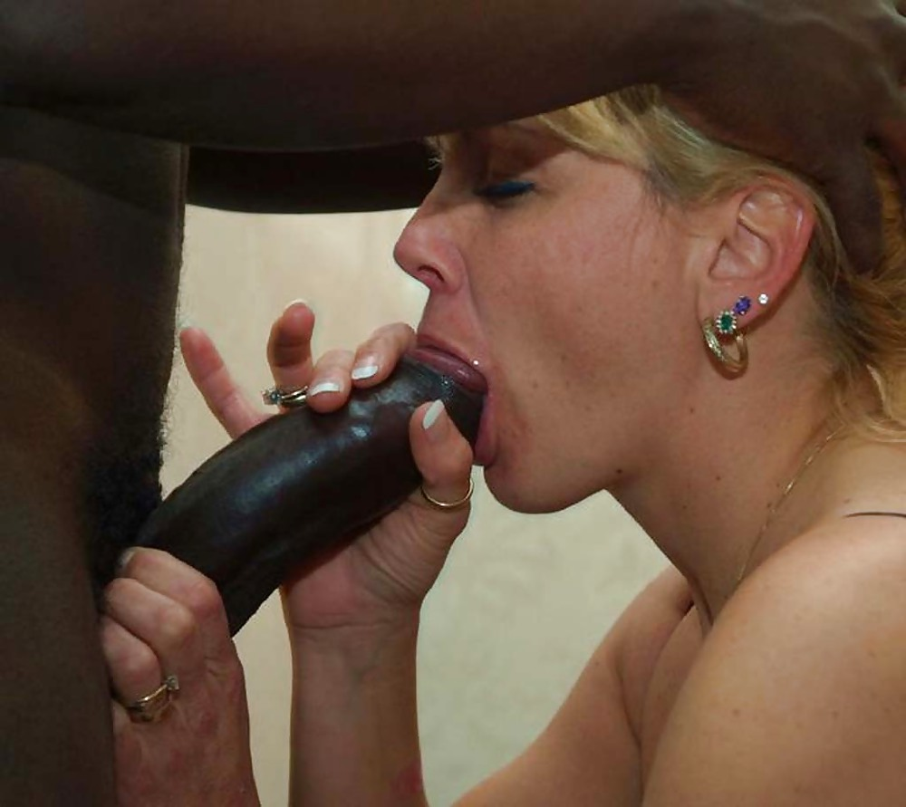 cock sucking swinger